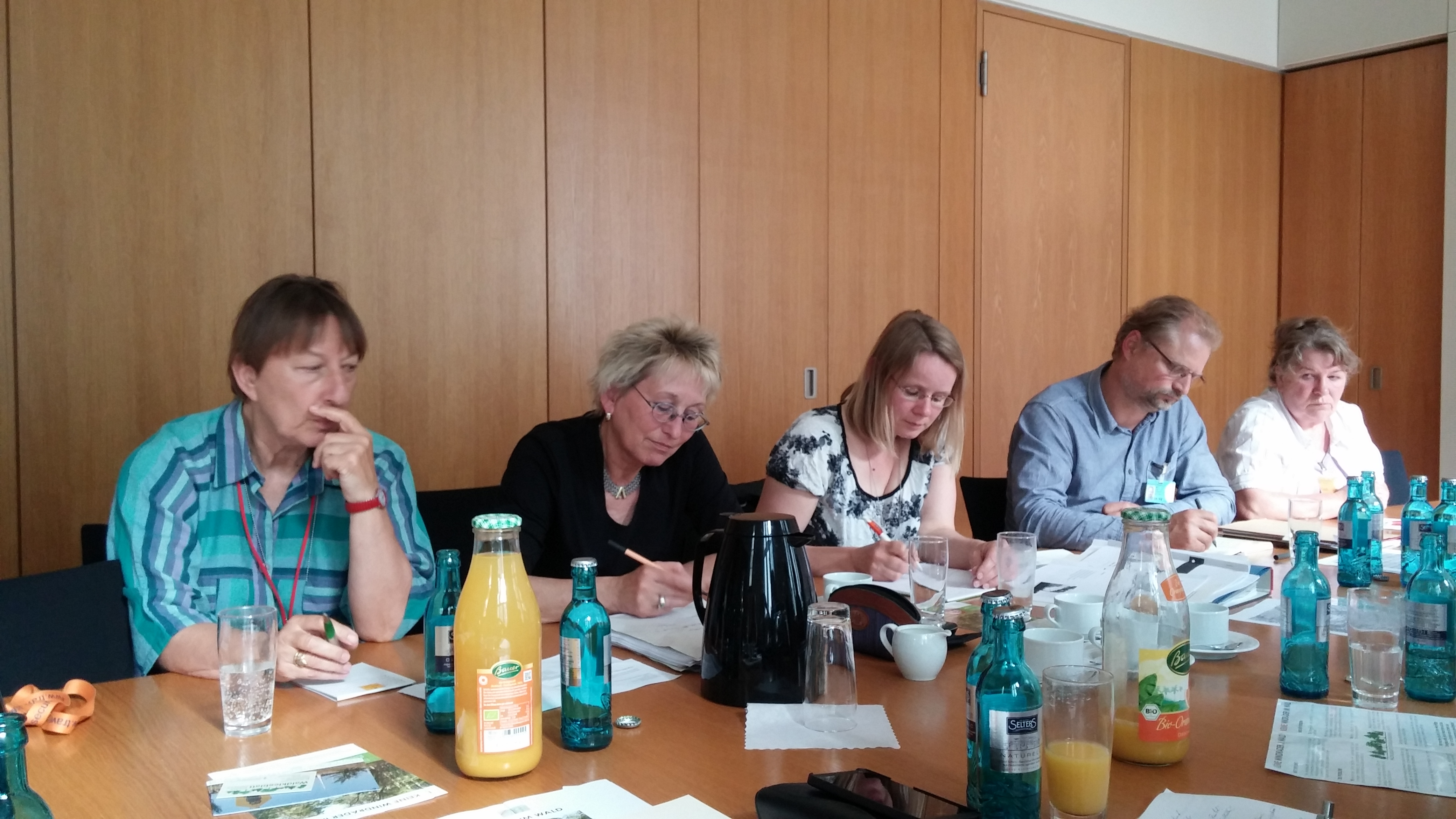 15-06-29 Bundestag 2