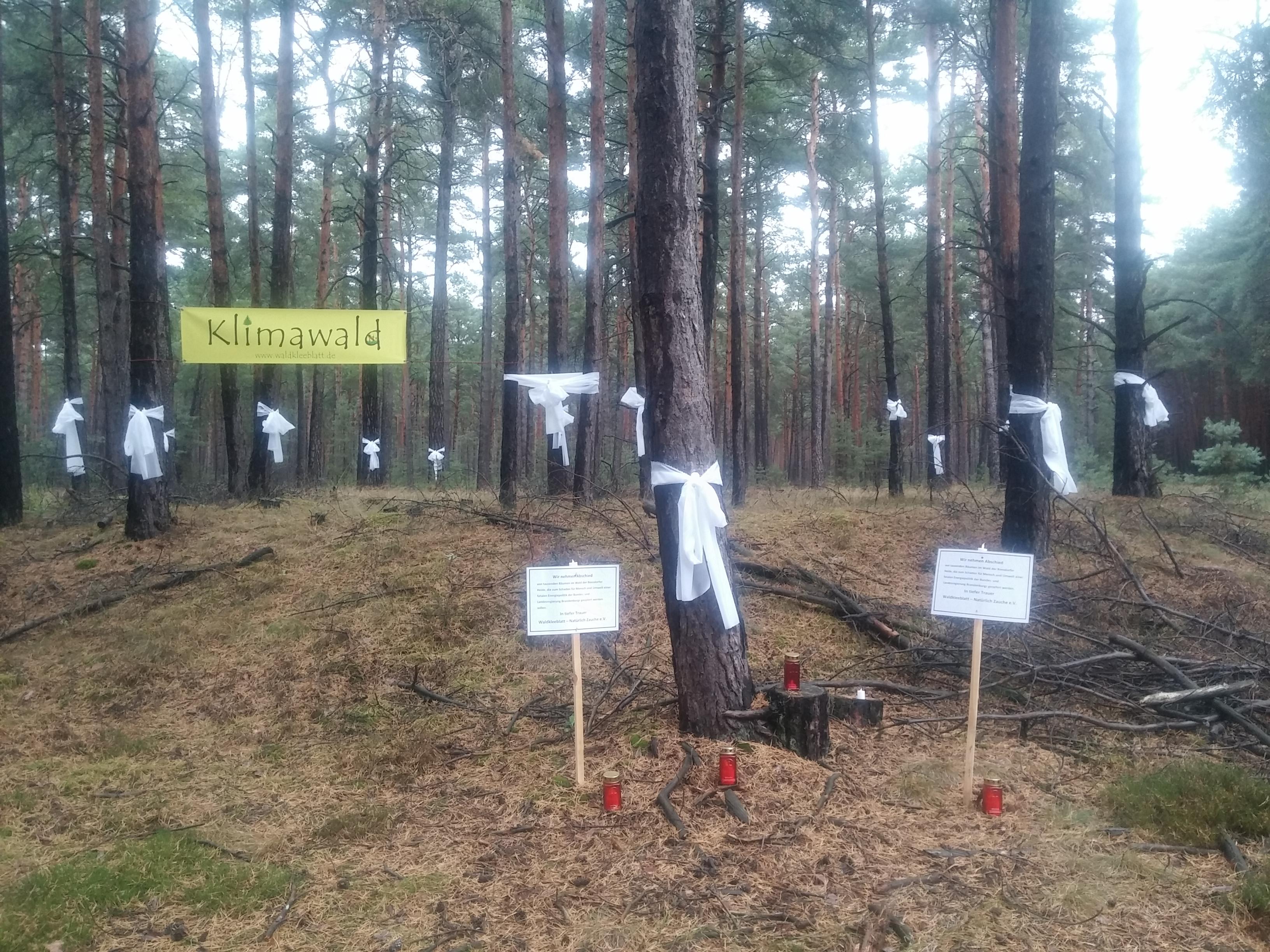 Protestveranstaltung am Samstag, 10.11.2018 / 14 Uhr in Reesdorf (OT der Spargelstadt Beelitz) / verlängerte Kaniner Straße / Keine Errichtung von Windkraftanlagen in Wäldern!