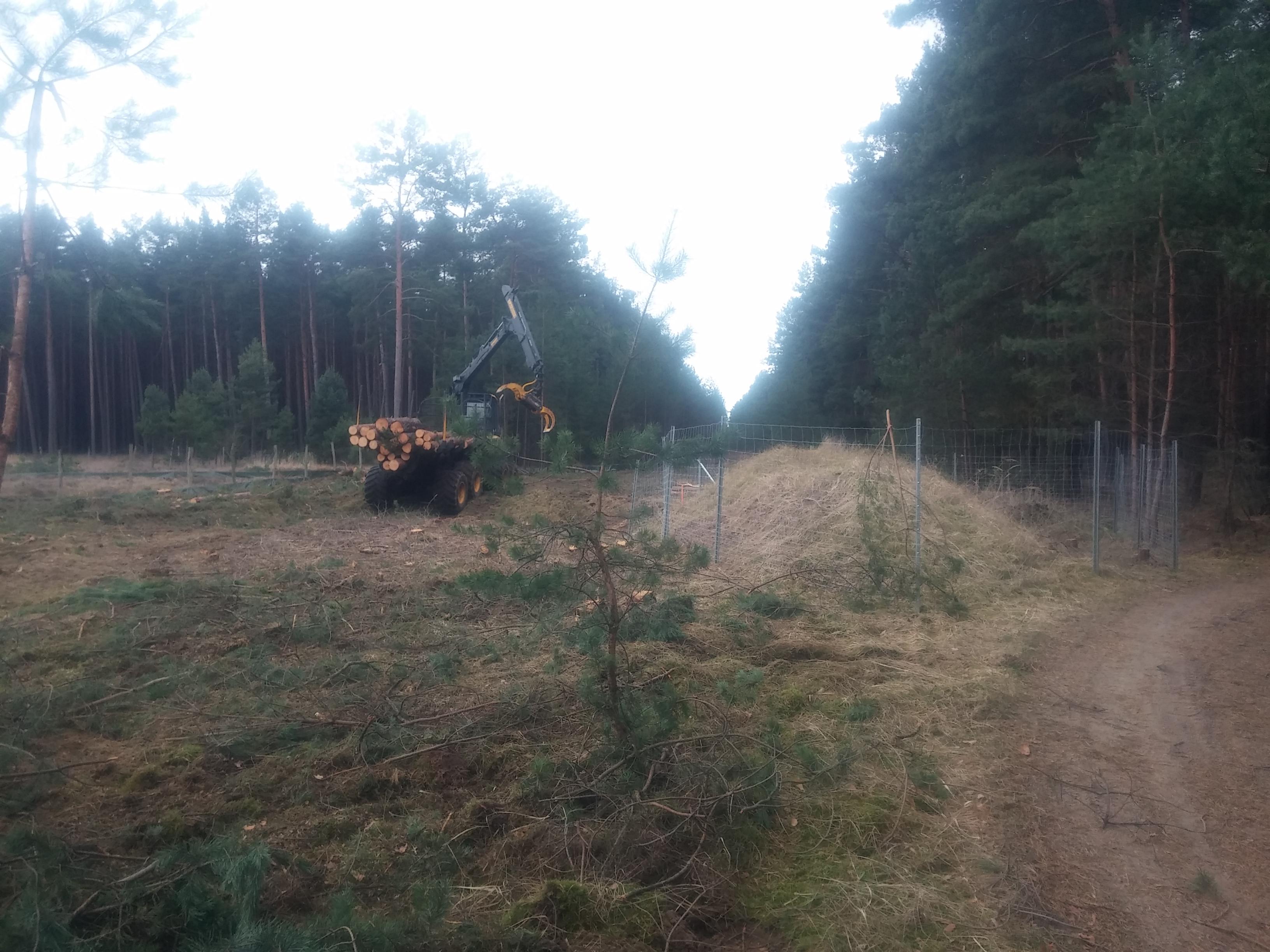 Presseerklärung des BUND gegen Windräder im Reesdorfer Forst