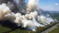 Waldbrand bei Fichtenwalde – wann handelt endlich die Politik?