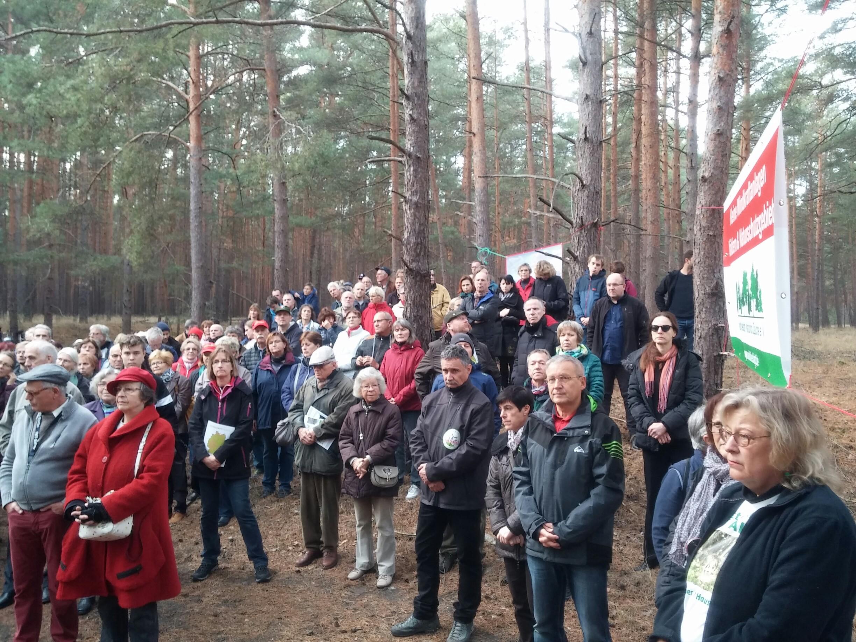 """Dreihundertfach: """"Keine Windkraftanlagen im Wald der Reesdorfer Heide (Beelitz)"""""""
