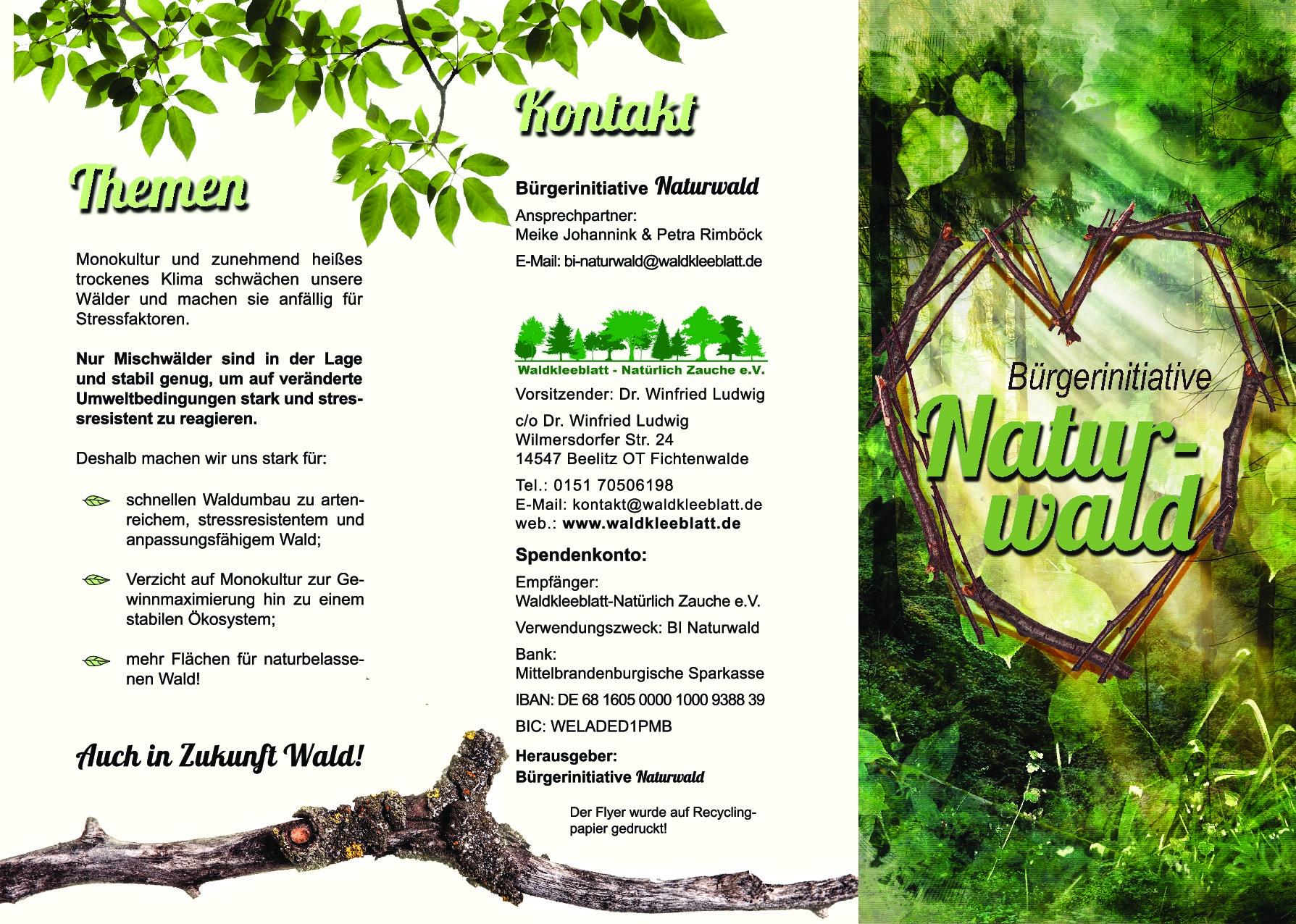 Die BI Naturwald im Waldkleeblatt – Natürlich Zauche e.V. hat ihren ersten Flyer fertig: