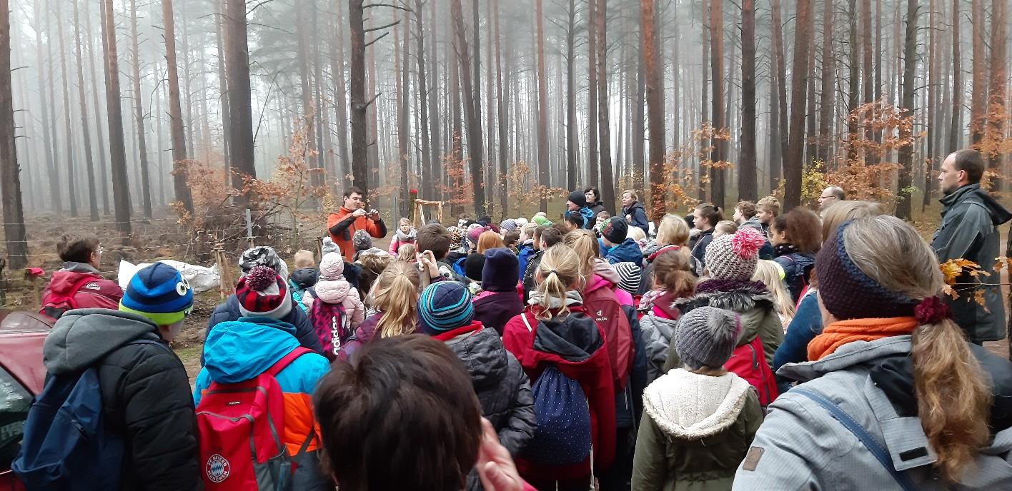 Fichtenwalder und Beelitzer Schüler/-innen haben über 8.200 Laubbäume am Donnerstag, 21.11.2019 und Freitag, 22.11.2019 gepflanzt