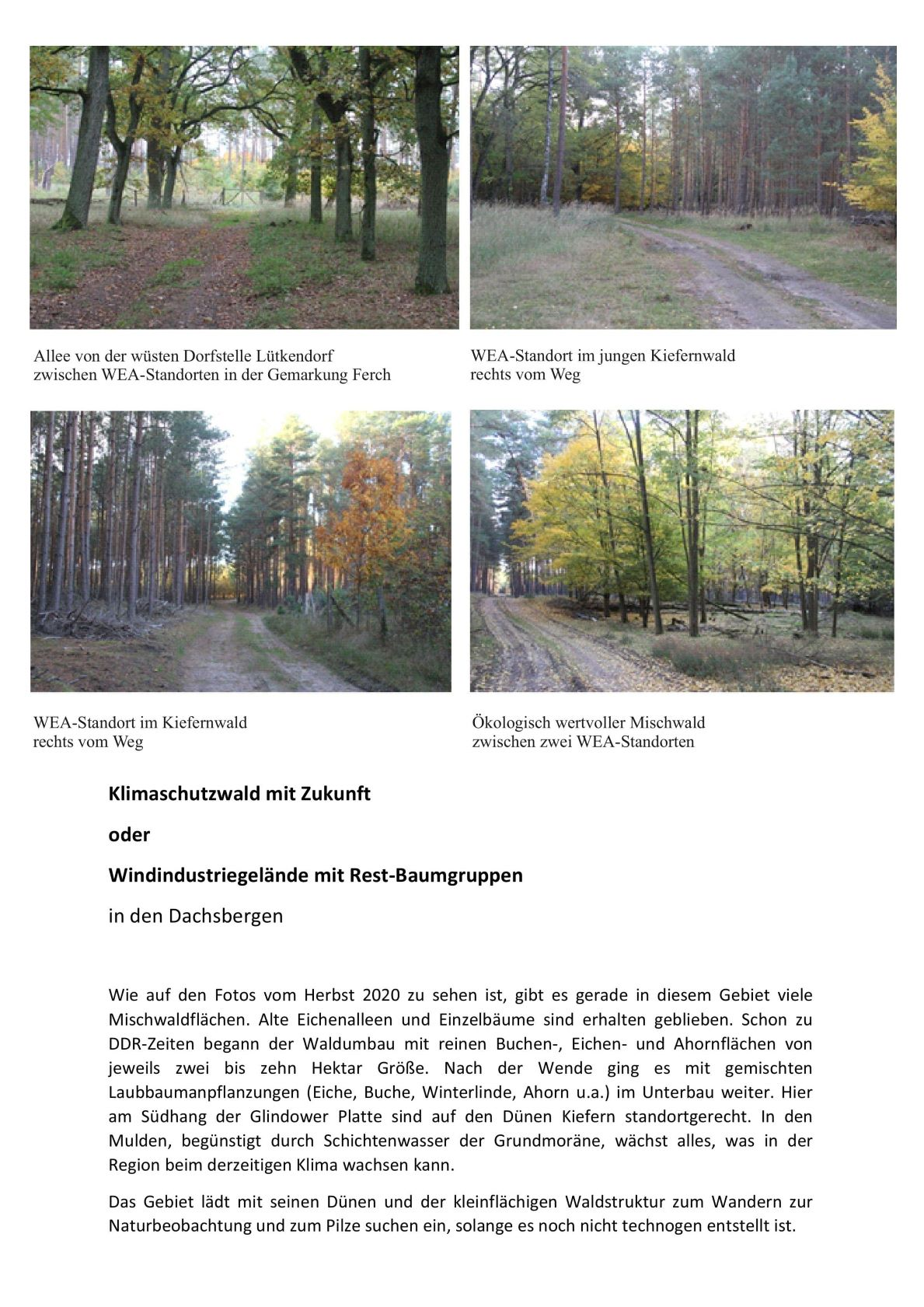 Dachsberg 1-min2